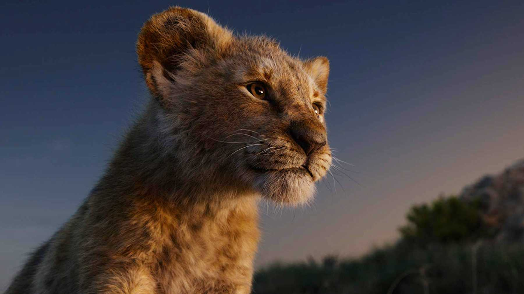The Lion King Review 2019